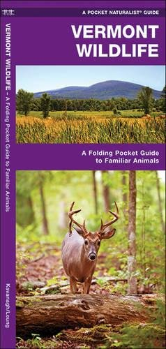 Vermont Wildlife: A Folding Pocket Guide to Familiar Species (A Pocket Naturalist - Waterford Stores Ct In