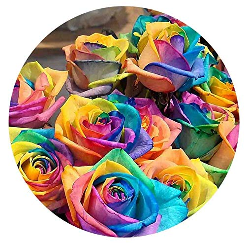 Rainbow Colored Roses Flowers Enamel 20mm Snap Button Charm for Ginger Snaps