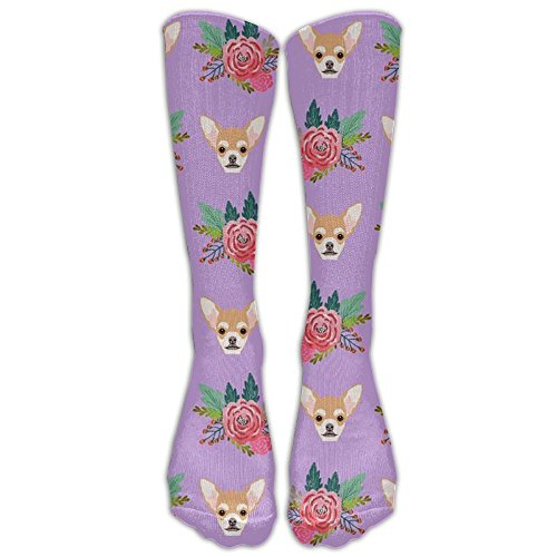 Chihuahua Portrait And Floral Outdoor Long Dress Socks High Fun Sock