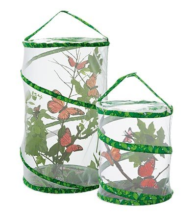 Insect Lore Butterfly Garden 12'' Netted Pavilion