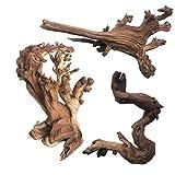 PIVBY Natural Aquarium Driftwood Assorted