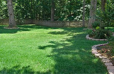 5 LBS Fescue Grass Seed Blend ,Combat Extreme,for Southern Zone - Usda Zones 8 - 10
