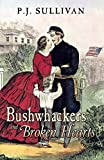Book Cover for Bushwhackers and Broken Hearts