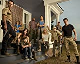 walking dead pictures - Walking Dead CAST 8 x 10 GLOSSY Photo Picture