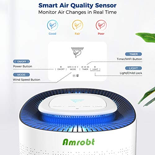Amrobt Smart Wi-Fi Air Purifier for Home Large Room with True HEPA Filter.4-layer Filtration, Odor Eliminator for Allergies and Pets, Ionic & Sterilizer, Air Cleaner for Office & Home, Rid of Mold, Smoke, Odor. Works with Alexa 51VoeLxrTGL