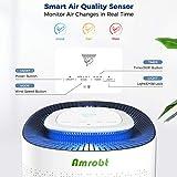 Amrobt Air Purifier H13 True HEPA Filter for Large