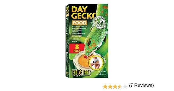 8 Unidades Exo Terra Comida para Gecko Diurno