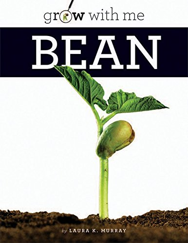 Bean (Grow with Me)
