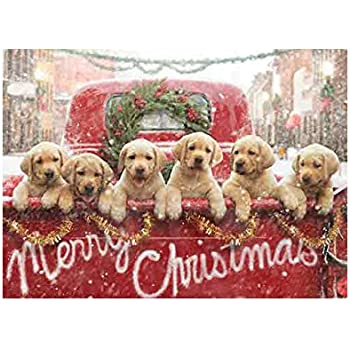 avanti press christmas cards all the love your heart can hold 10 count