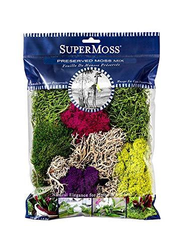 Spring Lb 0.25 (Preserved Moss Mix in Assorted Colors - .25 lb Per Bag)