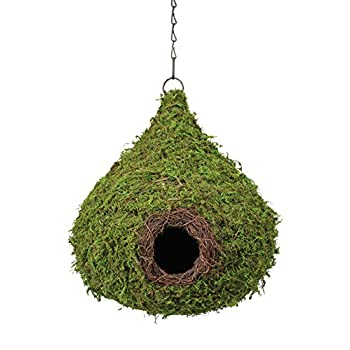 Super Moss (56010) Raindrop Birdhouse with Chain, 10 by 13-Inch, Fresh Green