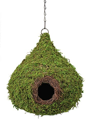 Super Moss (56010) Raindrop Birdhouse with Chain, 10 by 13-Inch, Fresh Green For Sale
