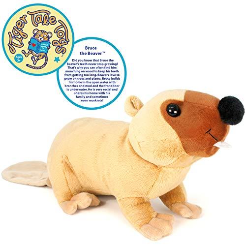 VIAHART Bruce The Beaver | 17 Inch Stuffed Animal Plush | by Tiger Tale Toys (Stuffed Plush Beaver)