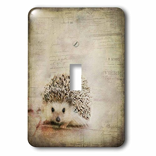 3dRose Andrea Haase Animals Illustration - Hedgehog Mixed Media Art With Typographic Elements - Light Switch Covers - single toggle switch (lsp_268162_1) by 3dRose