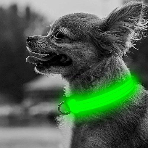 Domi LED Dog Collar-USB Rechargeable Flashing XS Adjustable Light Up Dog Collar- Makes Your Dogs Visible, Safe & Be Seen (XS, Green) - Domi Three Light