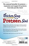 Chicken Soup for the Preteen Soul: Stories of Changes, Choices and Growing Up for Kids Ages 9-13 (Chicken Soup for the Soul)