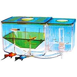 Saim Aqua Nursery Automatic Circulating Hatchery Aquarium
