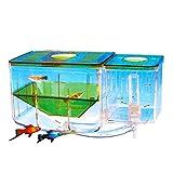 Saim Aqua Nursery Automatic Circulating Hatchery Aquarium