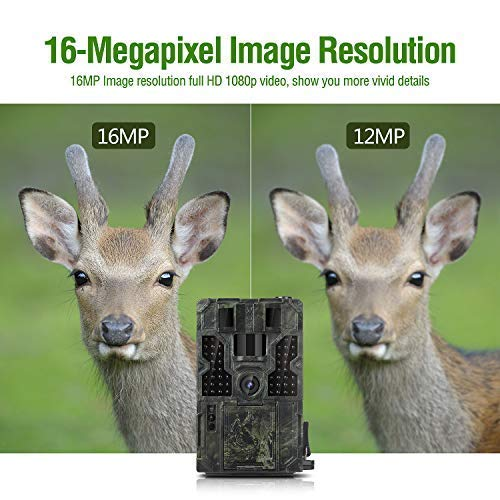 Clobo 16MP 1080P Trail Game Cam