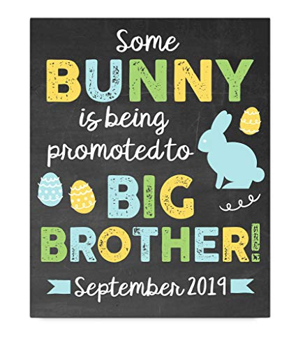 (Easter Big Brother Pregnancy Announcement Art Print | Pregnancy Announcement Sign | Baby Announcement Photo Prop | Big Brother Sign | New Baby Sign | Easter Baby Announcement)