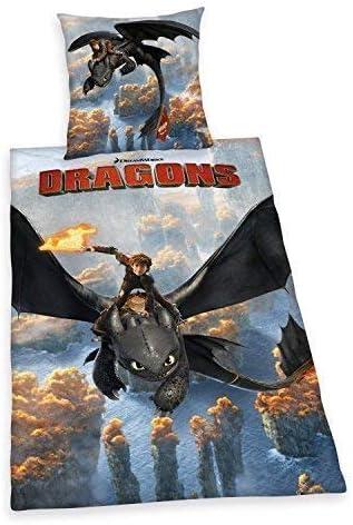 All-In-One-Outlet-24 Linge de Lit Lisse Dragons Dragons Dreamworks Zipper Photo Imprim/é 135 X 200 cm Cadeau Nouveau