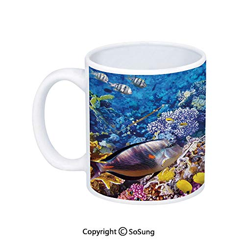 - Fish Coffee Mug,Egyptian Red Sea Bottom View with Marine Creatures Top of Tribal Ocean Scuba Image,Printed Ceramic Coffee Cup Water Tea Drinks Cup,Multicolor