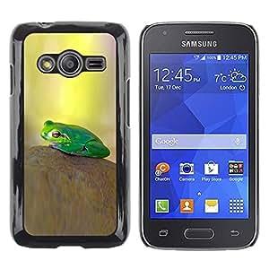 TopCaseStore / la caja del caucho duro de la cubierta de protección de la piel - Pastel Yellow Green Nature - Samsung Galaxy Ace 4 G313 SM-G313F