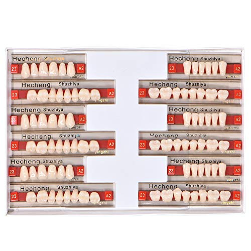 Angzhili 84 Pcs Dental Complete Acrylic Resin Denture False Teeth 3 Sets Synthetic Polymer Resin Denture Teeth 23 Shade A2 Upper + Lower Dental Materials -