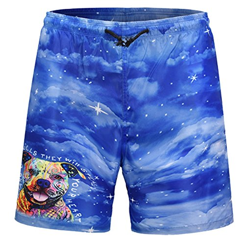 AJHFI HSAH Pitbulls They Will Steal Your Heart Men's Swim Trunks Quick Dry Beach Shorts