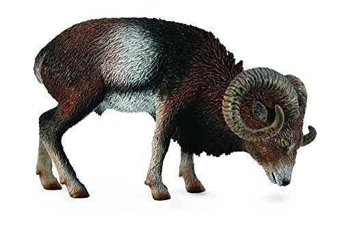 Collect A Wild Life European Mouflon Toy Figure by Collecta