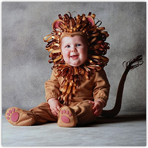 Tom Arma Lion Web 4t-5toddler