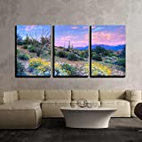 """wall26 - 3 Piece Canvas Wall Art - Blooming Sonoran Desert at Sunset. - Modern Home Decor Stretched and Framed Ready to Hang - 16""""x24""""x3 Panels"""