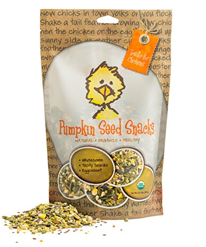 Treats for Chickens Certified Organic  Pumpkin Seed Snacks, 1-Pound, 13 oz by Treats For Chickens