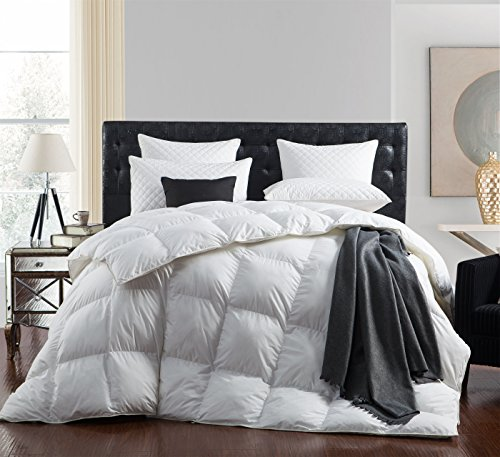 LUXURIOUS 1200 Thread Count GOOSE DOWN Comforter Duvet Insert, Queen Size, 1200TC - 100% Egyptian Cotton Cover, 750+ Fill Power, 50 oz Fill Weight, White Color