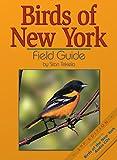 Birds of New York Field Guide (Bird Identification Guides)