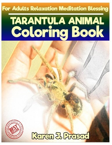 (TARANTULA ANIMAL Coloring book for Adults Relaxation  Meditation Blessing: Sketches Coloring Book Grayscale Images )