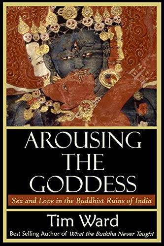 Arousing the Goddess: Sex and Love in the Buddhist Ruins of India (Arousing Love)