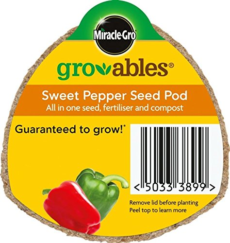 Miracle Gro Gro-ables Grow Seed Pot Sweet Pepper