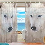 Cheap INGBAGS Bedroom Decor Living Room Decorations Wolf Pattern Print Tulle Polyester Door Window Gauze / Sheer Curtain Drape Two Panels Set 55×78 inch ,Set of 2