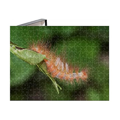 (Media Storehouse 252 Piece Puzzle of Tussock Moth Caterpillar (14656168))