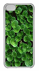 iPhone 5C Case, Personalized Custom Desktop Plants for iPhone 5C PC Clear Case by Maris's Diary