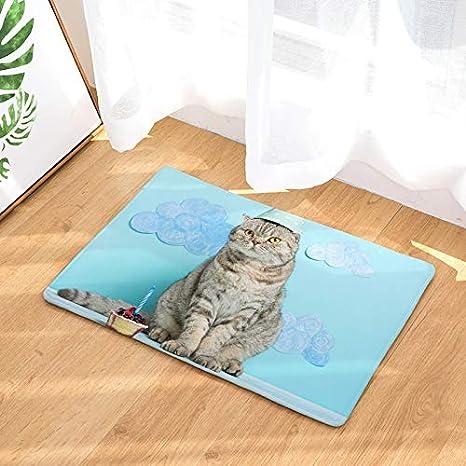 NOVELOVE Flannel Cat Digital Print Pad Cocina Succión ...