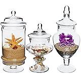 Set of 3 Deluxe Apothecary Jar Sets / Glass Kitchen Storage Jars / Terrarium & Home Decor Centerpieces