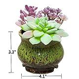 A-Garden 4.1'' Ceramic Flowing Glaze Sucuulent Plant Pot/Cactus Pot Flower Pot/Container/Planter with a Hole (Green 1)