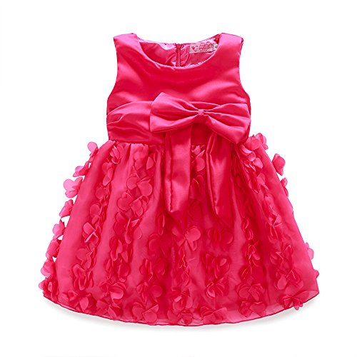 Hatoys Kids Girls Floral Princess Bridesmaid Pageant Gown Birthday Party Wedding Dress