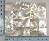 150 Pieces 2cm(0.78'') Square Sea White Abalone Shell. Two Side Polished. For Mosaic Art Tiles, Musical Instrument Inlay.