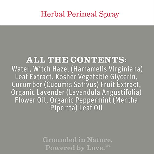 Earth Mama Herbal Perineal Spray for Pregnancy and Postpartum, 4-Fluid Ounce (2-Pack) by Earth Mama (Image #1)