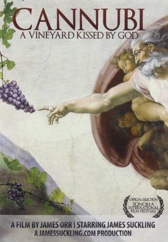 World Vineyard Italian - Cannubi: A Vineyard Kissed By God