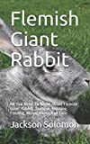 Flemish Giant Rabbit: All You Need To Know About