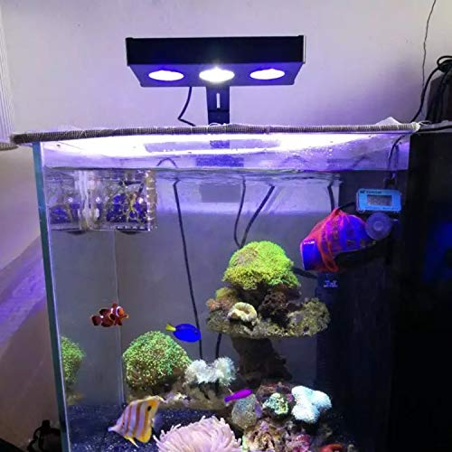 Iluminación para agua salada con luz LED para acuario 30W para interiores Iluminación LED de agua salada con control táctil para el acuario de arrecife de ...